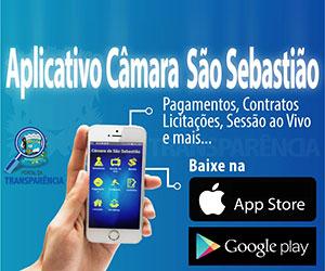 banner_camara_saoseba_app_300x250.jpg